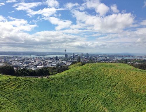 7 imprescindibles de Nueva Zelanda