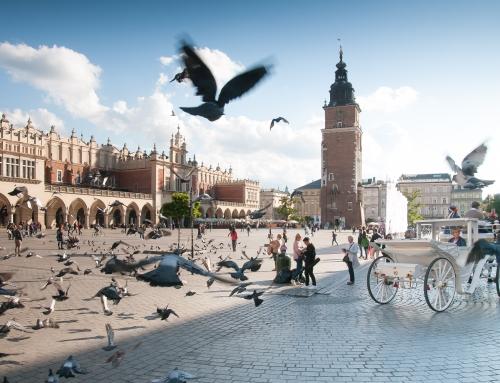 La huella del nazismo en Cracovia y alrededores